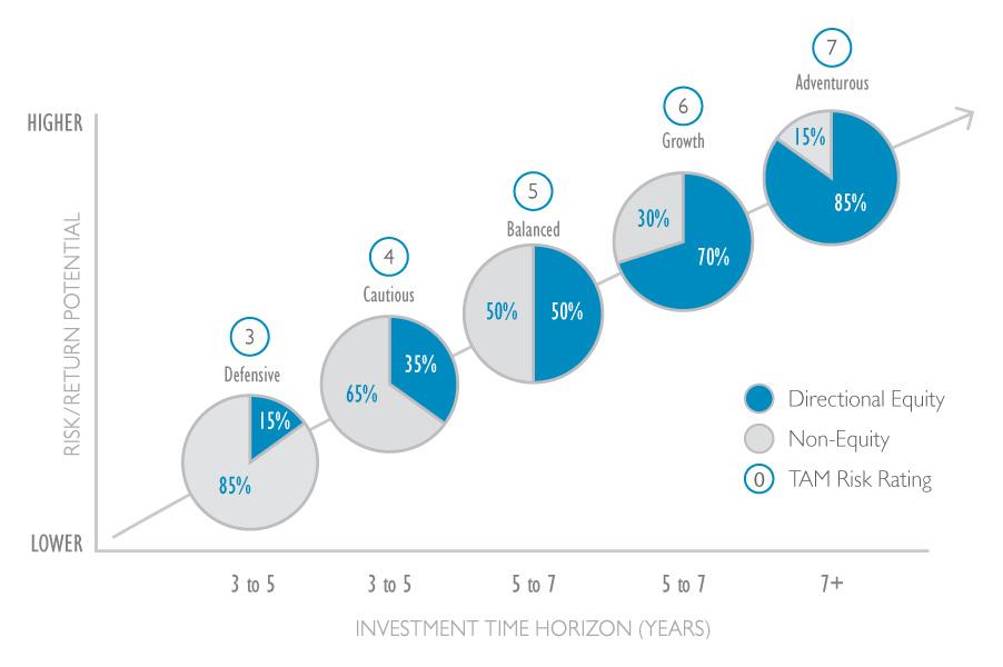 TAM Passive Risk Chart